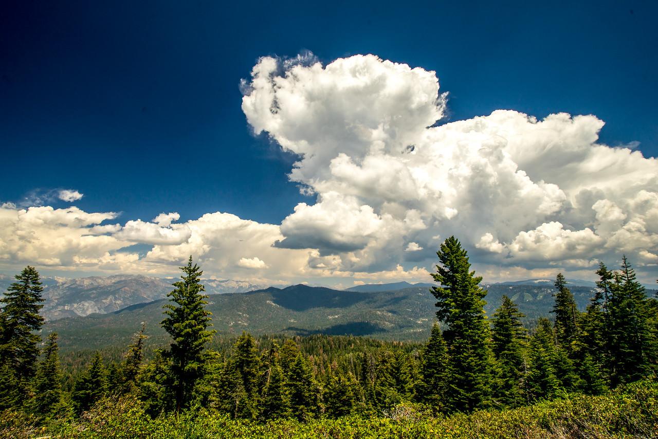 John Muir Country!  Kings Canyon & Sequoia National Park! Sony A7r & Sony 16-35mm Vario-Tessar T FE F4 ZA OSS E-Mount Lens!