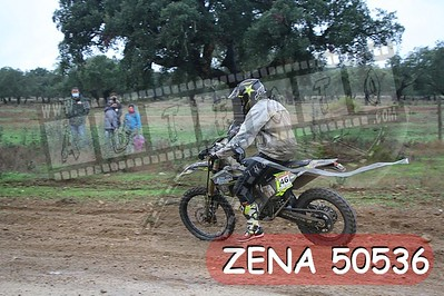 ZENA 50536