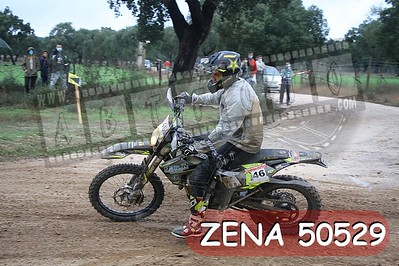 ZENA 50529