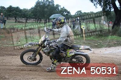 ZENA 50531