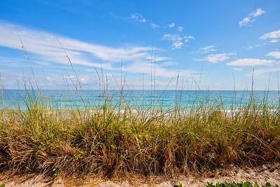 4600 Caledon Shores - 101- January 09, 2012-29