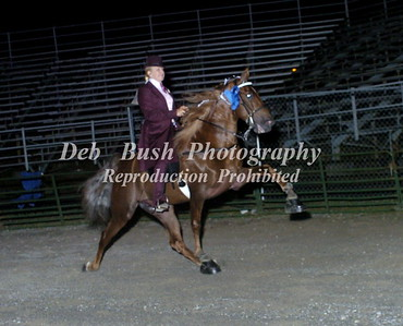 CLASS 23 AMATEUR PONY WALKING SPECIALTY