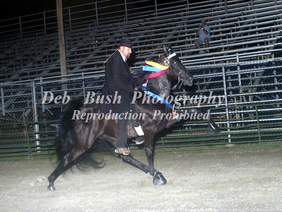 CLASS 32  WALKING HORSE STAKE SPECIALTY
