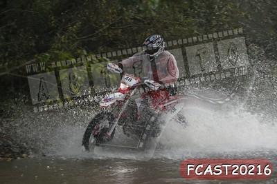 FCAST20216