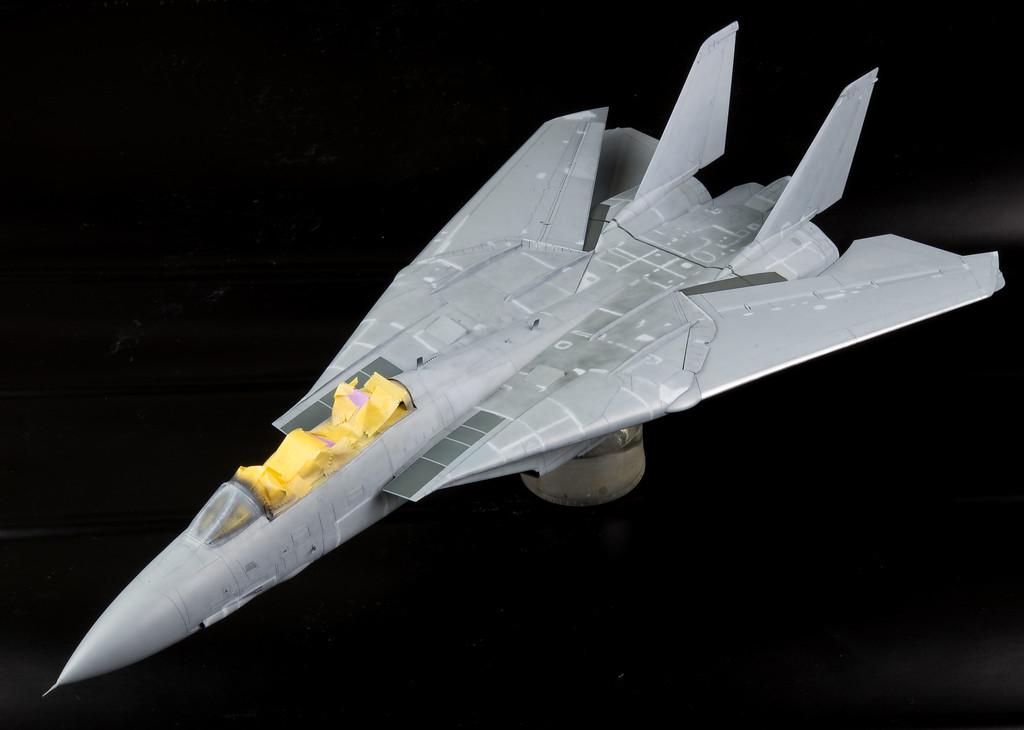 Tamiya F-14 122116-3