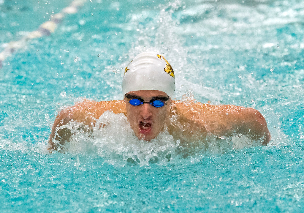 . Thompson Valley\'s Liam Gately compete in the 100-yard butterfly Friday afternoon May 13, 2016 during the Northern Conference Championships preliminary round at the Greeley Recreation Center. (Photo by Michael Brian/Loveland Reporter-Herald)