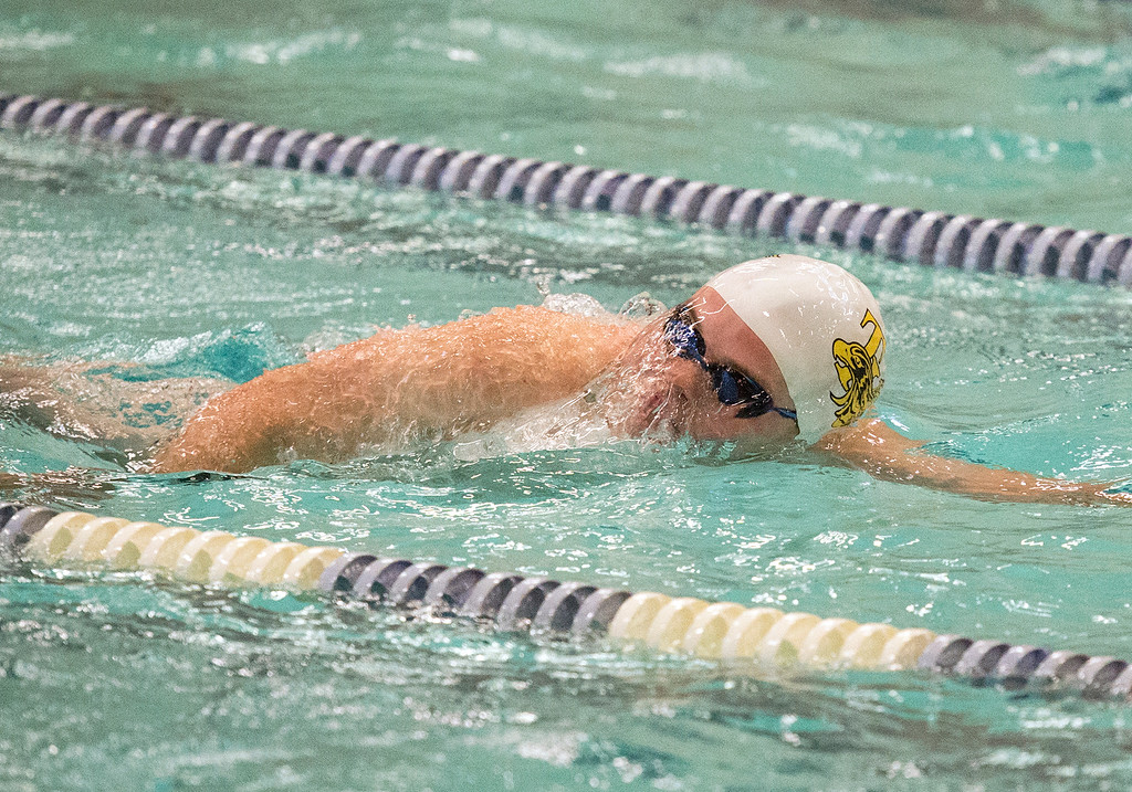 . Thompson Valley\'s Jack Kisch swims the 100-yard freestyle Friday afternoon May 13, 2016 during the Northern Conference Championships preliminary round at the Greeley Recreation Center. (Photo by Michael Brian/Loveland Reporter-Herald)