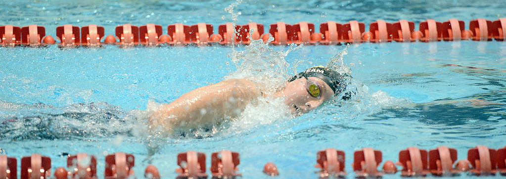 . Thompson Valley\'s Adley Morison stretches her stroke during the 500-yard freestyle during the 4A girls state swim meet preliminaries Friday at Veterans Memorial Aquatic Center.