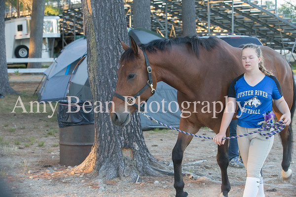 4H County Horse Show 2018