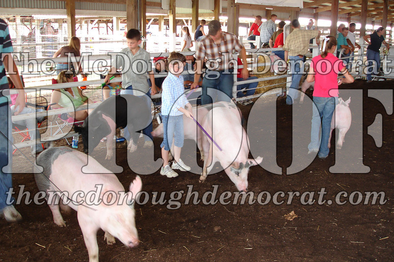 Schuyler Co Fair 07-01-06 026