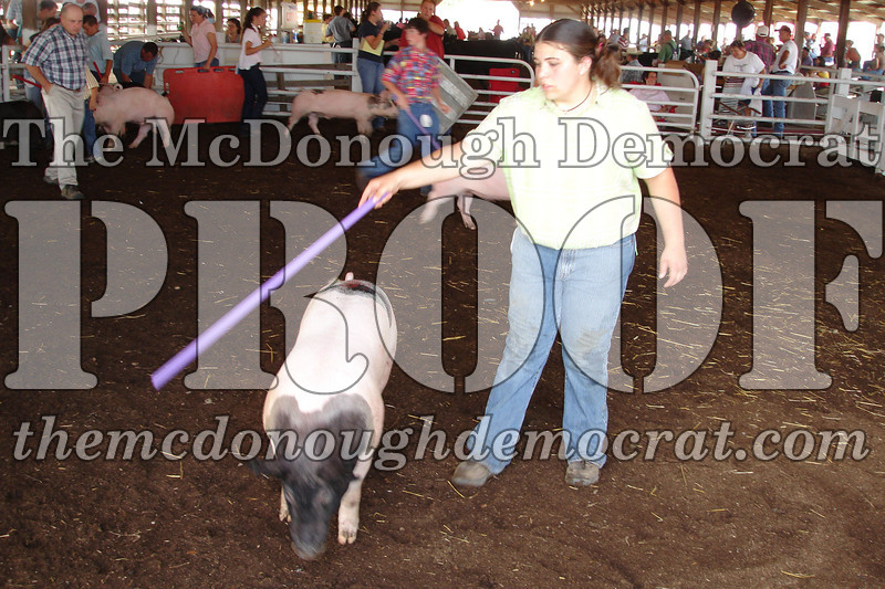 Schuyler Co Fair 07-01-06 019