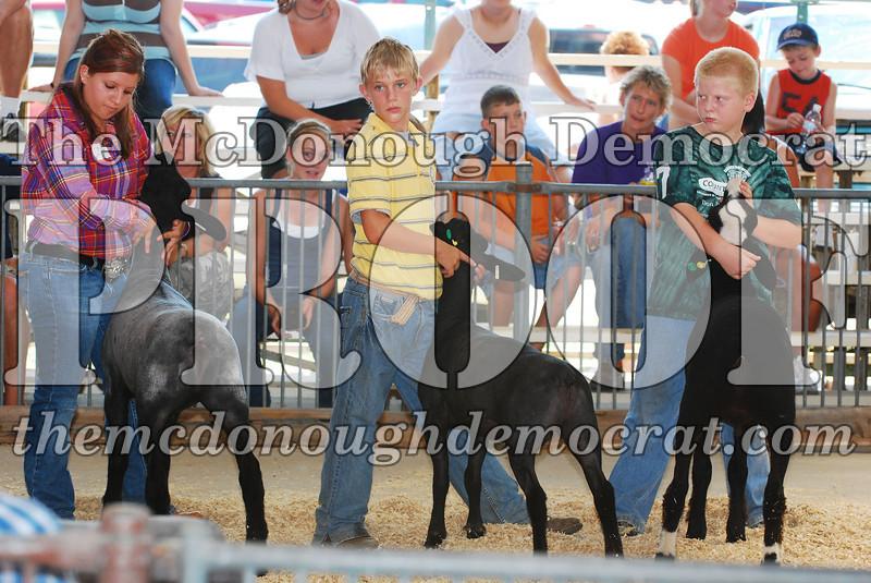State Fair 08-11-07 026