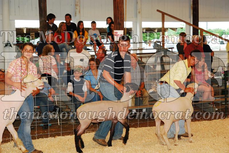 McDonough Co Fair 07-08-08 021