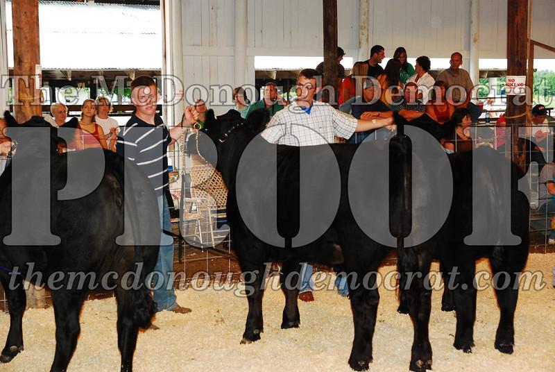 McDonough Co Fair 07-08-08 036