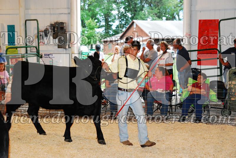 McDonough Co Fair 07-08-08 028
