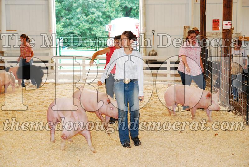 McDonough Co Fair 07-08-08 001