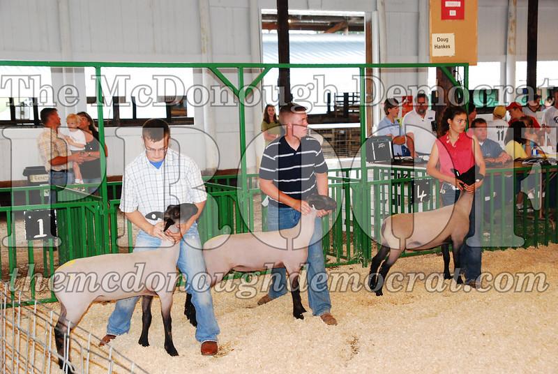 McDonough Co Fair 07-08-08 012