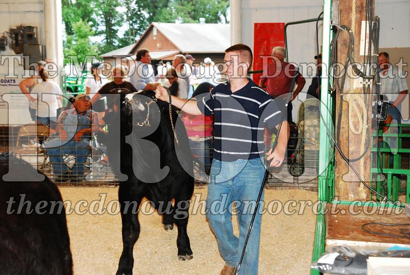 McDonough Co Fair 07-08-08 030
