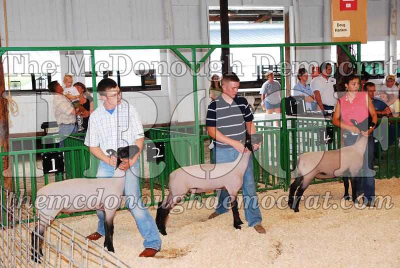 McDonough Co Fair 07-08-08 013