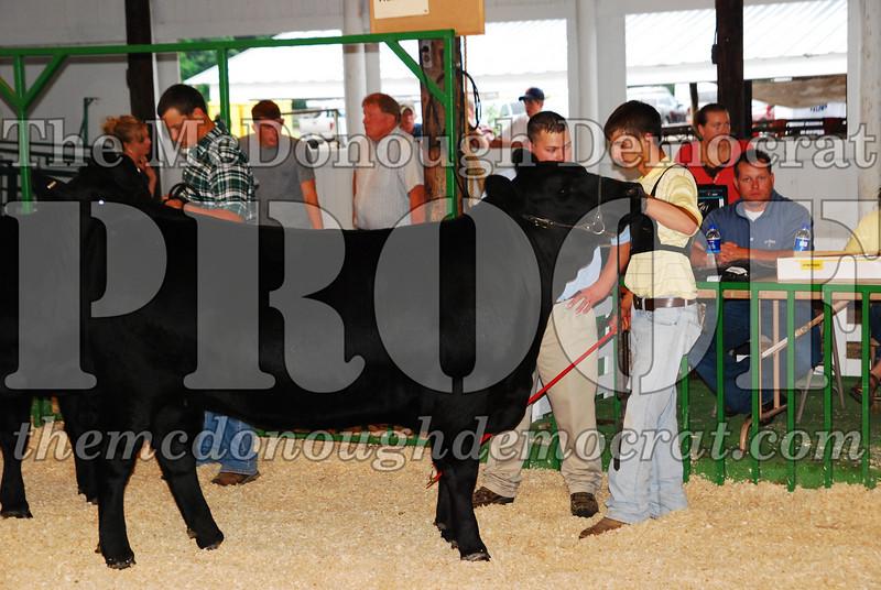 McDonough Co Fair 07-08-08 034