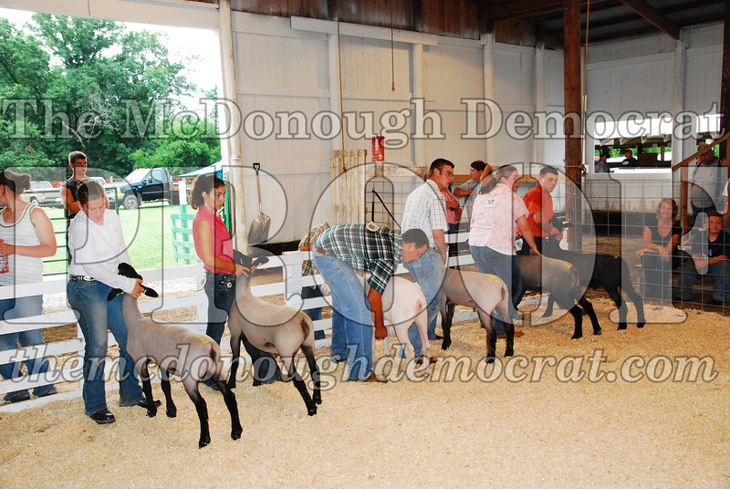 McDonough Co Fair 07-08-08 022