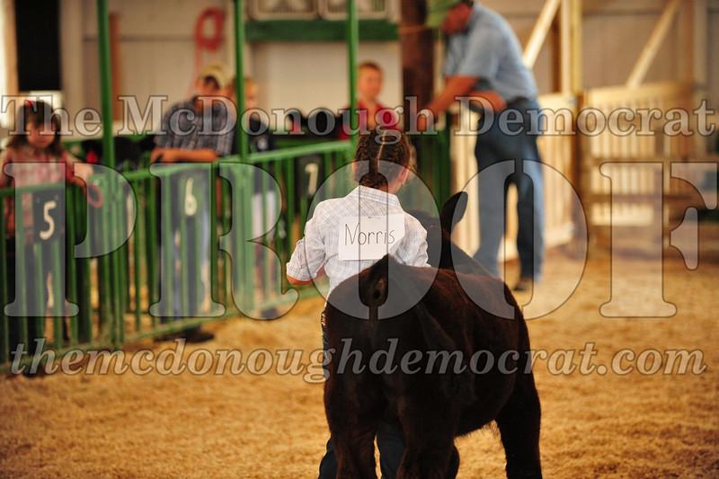 2009 McDonough Co 4H Fair 07-13-09 009