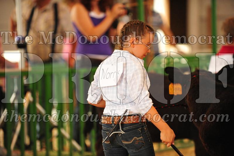 2009 McDonough Co 4H Fair 07-13-09 023