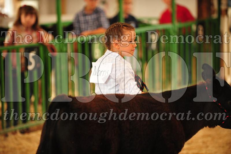 2009 McDonough Co 4H Fair 07-13-09 008