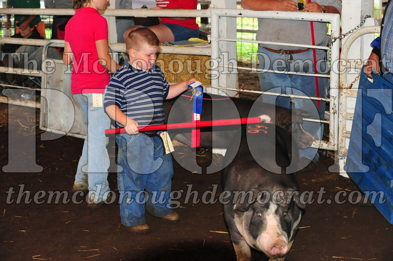 Schuyler County Fair 07-04-09 150