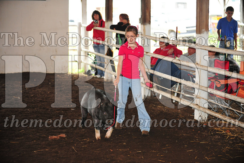 Schuyler County Fair 07-04-09 016