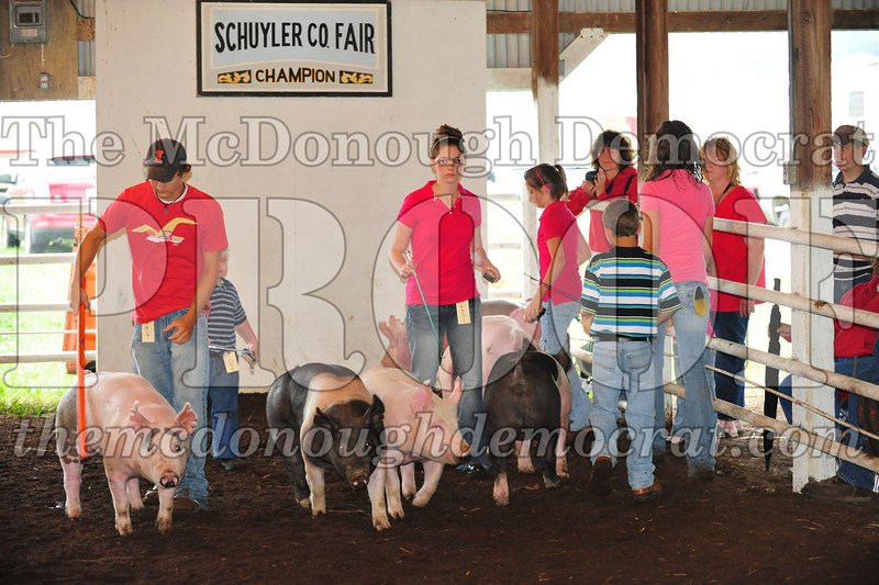 Schuyler County Fair 07-04-09 029