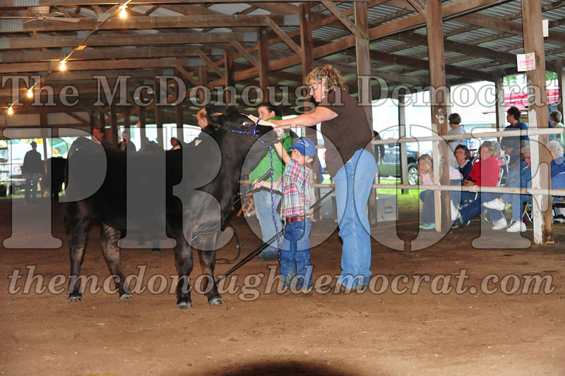 Schuyler County Fair 07-04-09 157