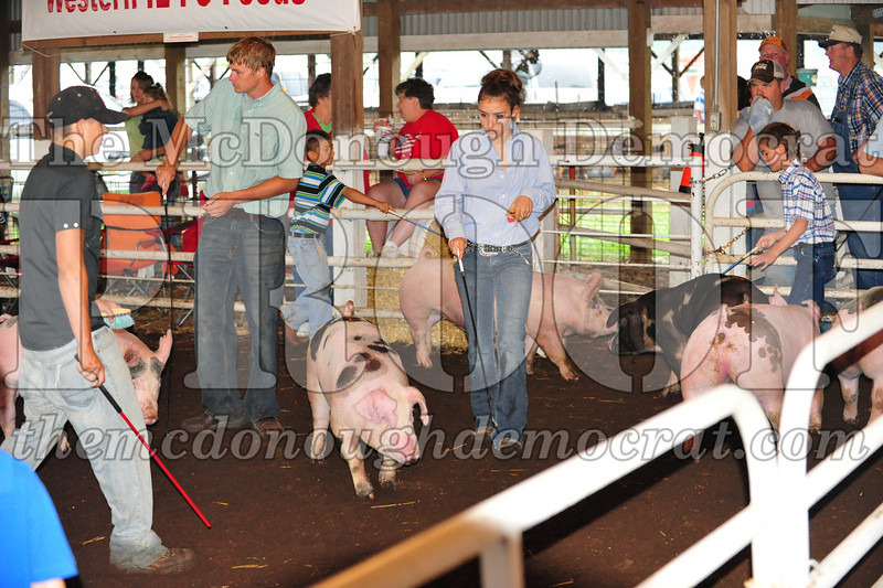Schuyler County Fair 07-04-09 052
