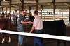 Schuyler County Fair 07-04-09 382