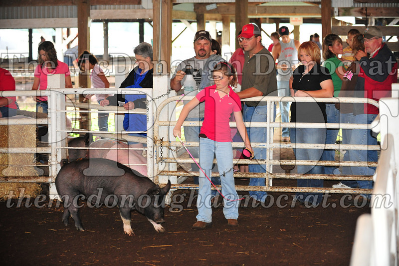Schuyler County Fair 07-04-09 017