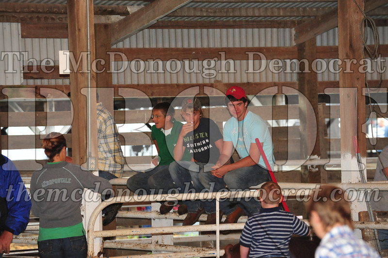 Schuyler County Fair 07-04-09 139