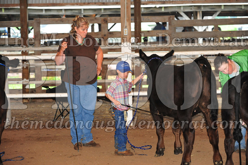 Schuyler County Fair 07-04-09 152