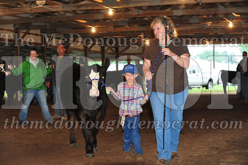 Schuyler County Fair 07-04-09 156