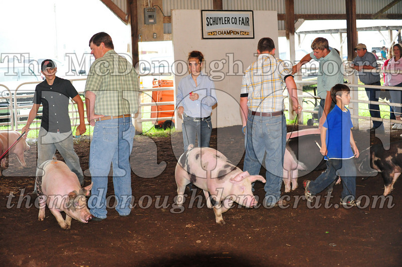 Schuyler County Fair 07-04-09 049