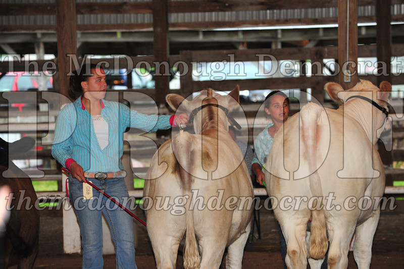 Schuyler County Fair 07-04-09 182