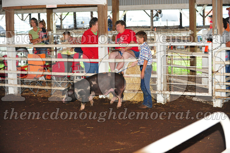 Schuyler County Fair 07-04-09 051