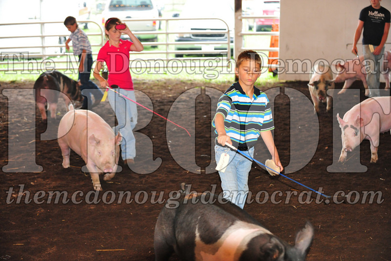 Schuyler County Fair 07-04-09 026
