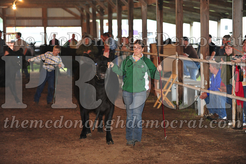 Schuyler County Fair 07-04-09 057