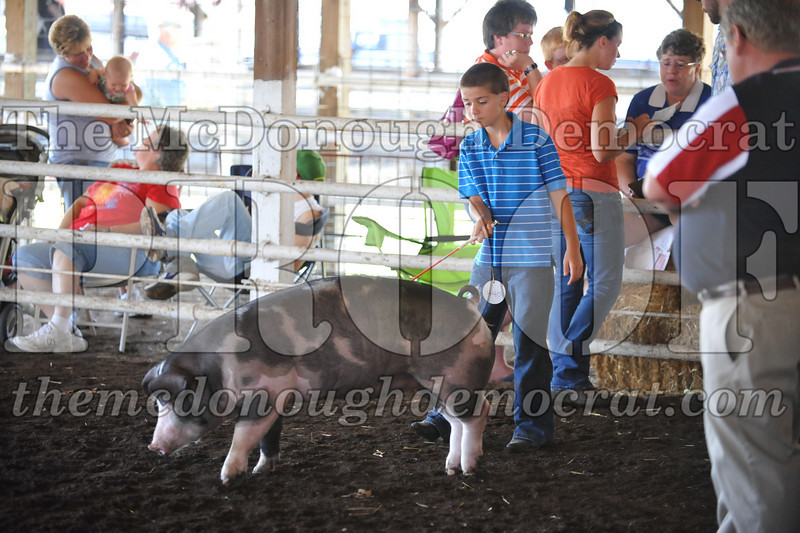 Schulyler Co Fair 07-03-10 026