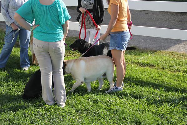 Delaware County Fair 2012