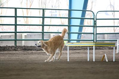 3-11-2018 Bloodhound-1761