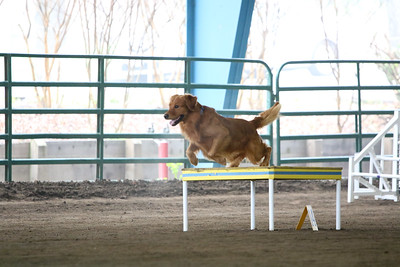 3-11-2018 Bloodhound-1777