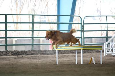 3-11-2018 Bloodhound-1778