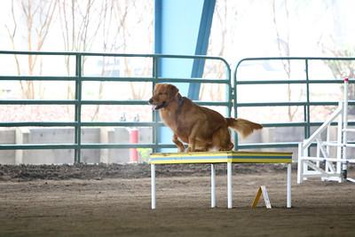 3-11-2018 Bloodhound-1776