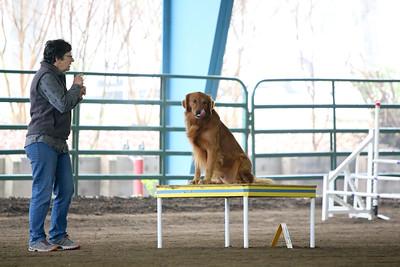3-11-2018 Bloodhound-1775